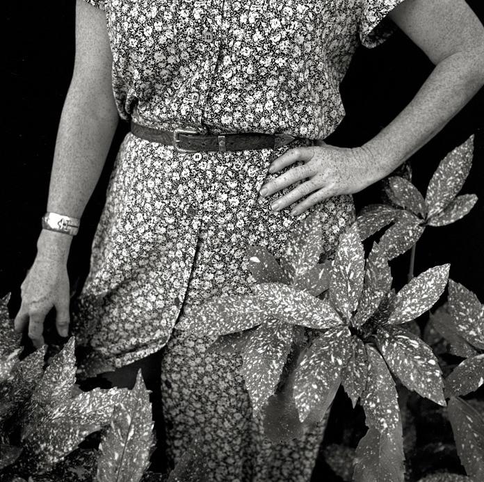 Carolyn DeMerritt