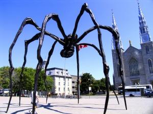 June3_spider972x729