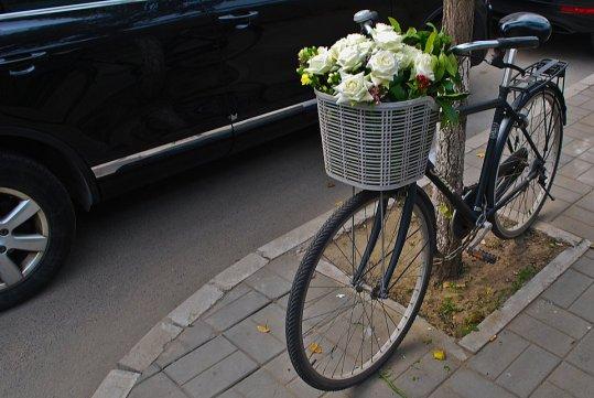 #Flowersforfreedom