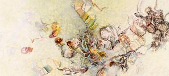 Susan Brenner, Natural Histories 1001