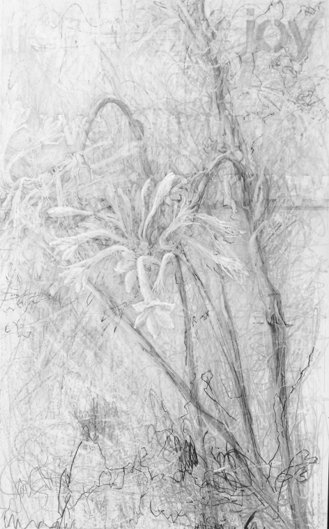 """Funeral Flowers,"" 2014, graphite on claybord, 19.5 x 12 in."