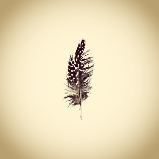 "Josh White, ""Feather"""