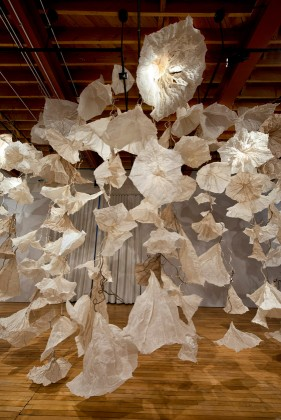 "Jocelyn Chateauvert, ""Paper in Bloom"", Cornell College, Mt. Vernon, Iowa January 2014 through March 2014."